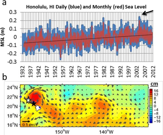 Figure 3-15 (a) Daily and monthly mean sea levels at NOAA Tide Gauge Honolulu (white star in (b)) are shown relative to the 1983–2001 mean sea level (MSL). The black line indicates the longterm relative sea-level rise (about 1.5 mm [0.059 in]/year); the arrow indicates the September 2003 event. (b) The gridded altimeter sea-surface height (SSH, contours in centimeters (cm), and mean circulation (vectors) for August 7, 2003, reveals the eddy directly north of the Hawaiian Islands. 0.1 m = 10 cm = 3.94 in. (Data in Figure 3-15a from NOAA; Figure 3-15b © 2004 American Geophysical Union. Reproduced/modified from Firing & Merrifield [2004] by permission of American Geophysical Union.)